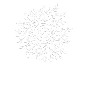 silva intuition system